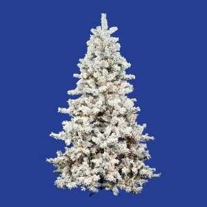 12 x 81 Flocked Mesabi Tree 1600 Multi Lights