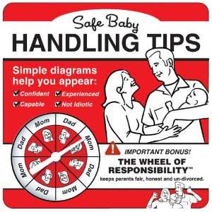 Safe Baby Handling Tips David Sopp, Kelly Sopp Books