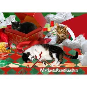 Why Santa Doesnt Have a Cat Christmas Card Set: Health
