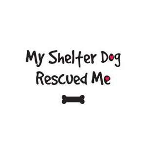 High Cotton My Shelter Dog Rescue Me Tee