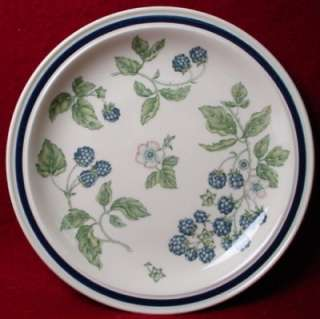 WEDGWOOD china BRAMBLE oven to table DINNER PLATE