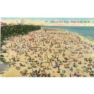 1950s Vintage Postcard Lummus Park Beach   Miami Beach