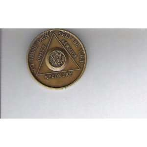Anonymous AA 12 Year Chip Token Medal Medallion: Everything Else