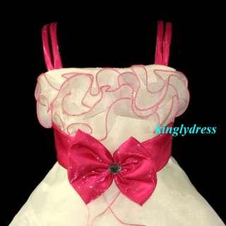 NEW Flower Girl Pageant Wedding Bridesmaid Princess Dress Pink Wears