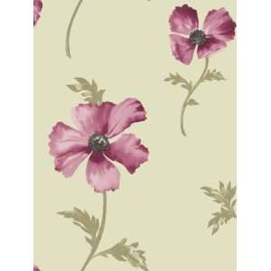 Wallpaper Shand Kydd III Oxford SK167657: Home Improvement
