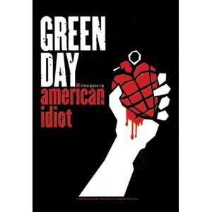 Green Day   American Idiot Textile Poster Flag