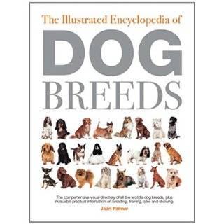Maltese, Beagle, Rottweiler, Dachshund, Golden Retriever, Pomeranian