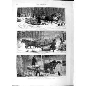 1877 Canada Farm Woodlands Trees Timber Horses Barn
