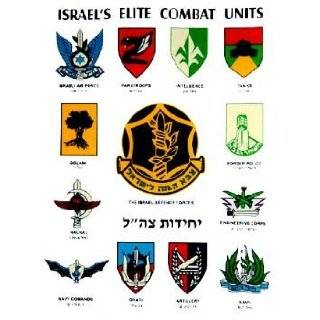 Commando   Navy Seals  Insignia Military Pin Israel: Everything Else