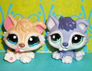 LPS HUSKY BABY PUPPY DOG LOT~#1013 CREAM & #1810 PURPLE~Littlest Pet