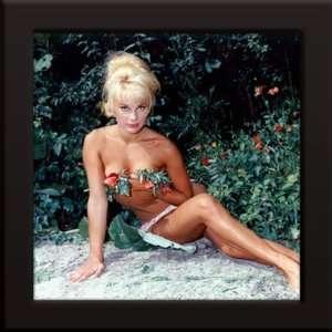 Elke Sommer Custom Framed 12x12 Color Photo:  Home