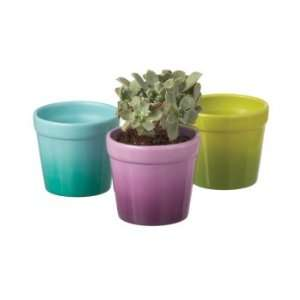 Garden Purple, Green, and Blue Garden Patio Flower Pots Patio, Lawn