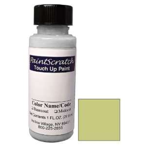 1 Oz. Bottle of Cactus Metallic Touch Up Paint for 1961