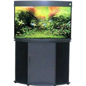 Rose 50 Gallon Corner Aquarium   With Aquarium Kit Everything Else